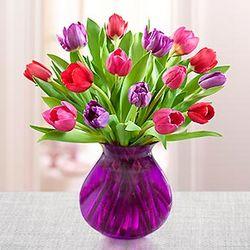Small Tulip Garden Bouquet