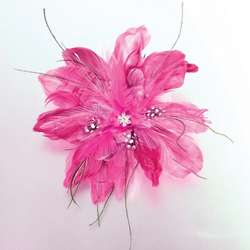 Sparkling Feather Clip and Pin