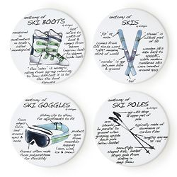 Anatomy of Sports Coasters