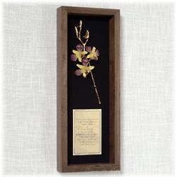 """11"""" Preserved Orchid and Wedding Invitation Remembrance Box"""