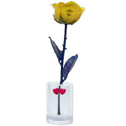 I Love You Preserved Rose with Oval Vase