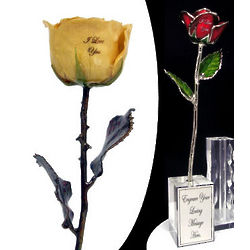"11"" I Love You Preserved Rose"