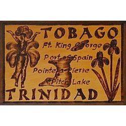 Trinidad Tobago Leather Photo Album in Natural