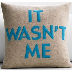 It Wasn't Me Eco Pillow