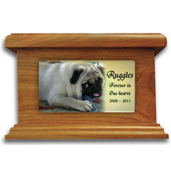 Small Dog Memorial Urn with Photo