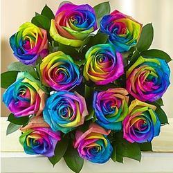 Kaleidoscope Roses Bouquet