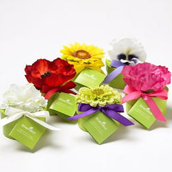 Assorted Bloembox Seed Favors