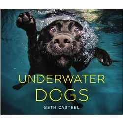 Underwater Dogs Book