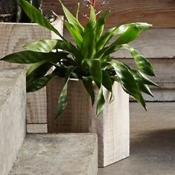 """12"""" Rustico Carved Wood Planter"""