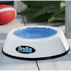 Cold Water Pet Bowl