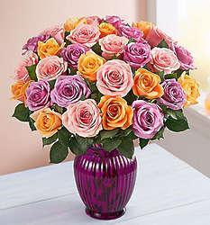 36 Stem Sorbet Rose Bouquet in Purple Vase