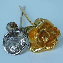 1 Platinum and 1 Gold Preserved Rose Duo