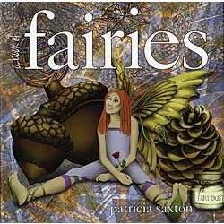 A Book of Fairies Hardcover Book