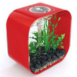 biOrb Life 30 Designer Red Aquarium