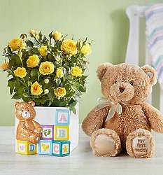 Baby Blocks Playtime Roses with Teddy Bear