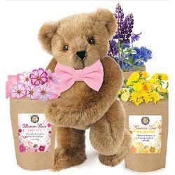 Blossom Teddy Bear with Flower Seeds