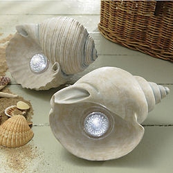 Solar Seashell Light
