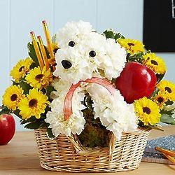 Teacher's Pet Floral Arrangement