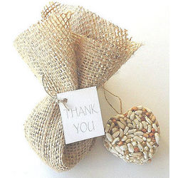 Bird Seed Heart Party Favors in Burlap Bag