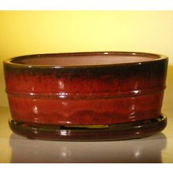 Glazed Parisian Red Bonsai Pot