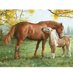 Little Higher Please Horse and Pony Puzzle