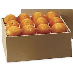 Valencia Oranges 8 Lbs.