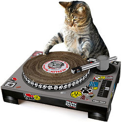 DJ Cat Turntable Scratching Post
