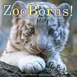 ZooBorns Hardcover Book