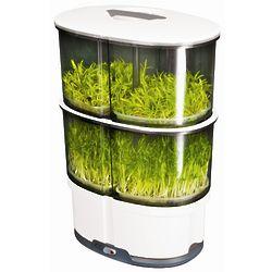 iPlant White 2-Level Sprout Garden