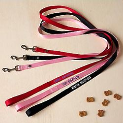 Personalized AKC Nylon Dog Leash