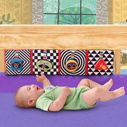 Discovery Shapes Baby Puzzle