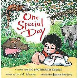 One Special Day Hardcover Book