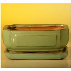 Ceramic Rectangle Bonsai Pot with Attached Drip Tray