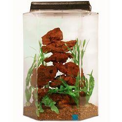 Deluxe Hexagon Aquarium Combo