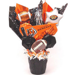 Bengals Fan CookiePot Bouquet