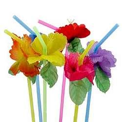 Hibiscus Flower Bendable Straws
