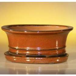 Aztec Orange Oval Bonsai Pot with Attached Drip Tray