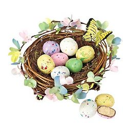 Spring Nest with Treats