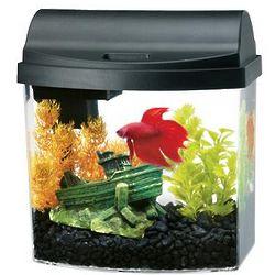 Double Sided Black Mini Bow Desktop Aquarium