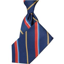 U.S. Coast Guard Silk Tie