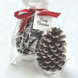 Personalized Pine Cone Fire Starter Party Favor