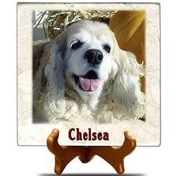 Pet Photo on Tuscany Marble