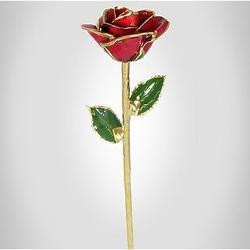 """18"""" Longstem Red Rose Preserved in 24kt Gold"""