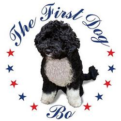 Obama's First Dog Bo T-Shirt