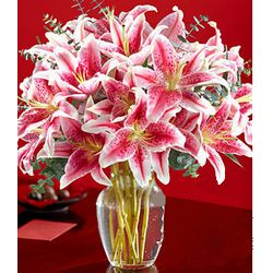 Deluxe Stargazer Lilies Flowers with Vase