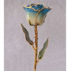Dark Blue Two Toned and 24k Gold Trimmed Preserved Rose