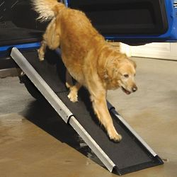 Telescoping Dog Ramp for Cars and SUVs