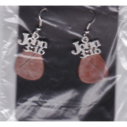 John 3:16 Hand Crafted Birch Bark Earrings