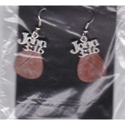 John 3:16 Hand Crafted Birch Bark Earrings
