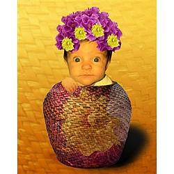 Flower Pot Baby Photo